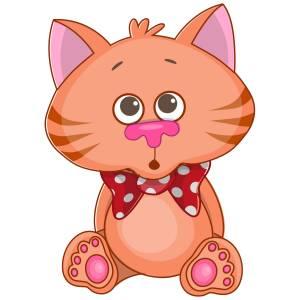 Kitten Main Product Image
