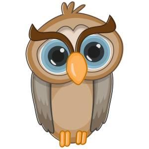Owl-Main-Product-Image