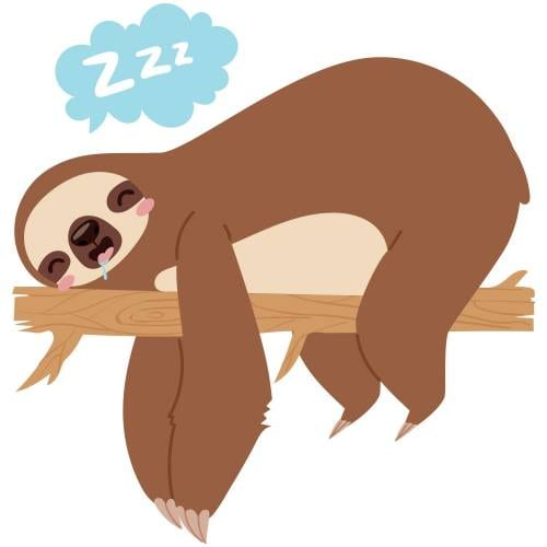 Sleeping-Sloth-Main-Product-Image