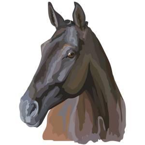 Horse-4-Main-Product-Image