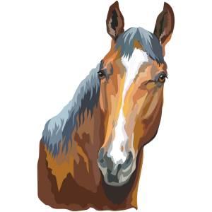Horse-6-Main-Product-Image