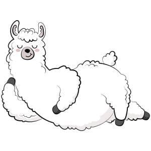 Lying-Llama-Main-Product-Image
