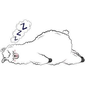 Sleeping-Llama-Main-Product-Image