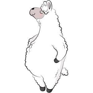 Standing-Llama-Main-Product-Image