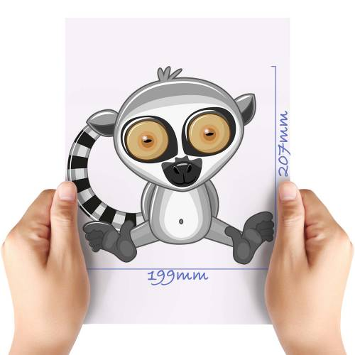 XL-Cute-Lemur-Matt-HTV-Transfer