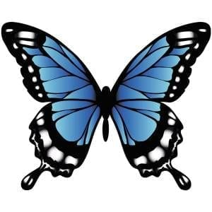 Butterfly-4-Main-Product-Image