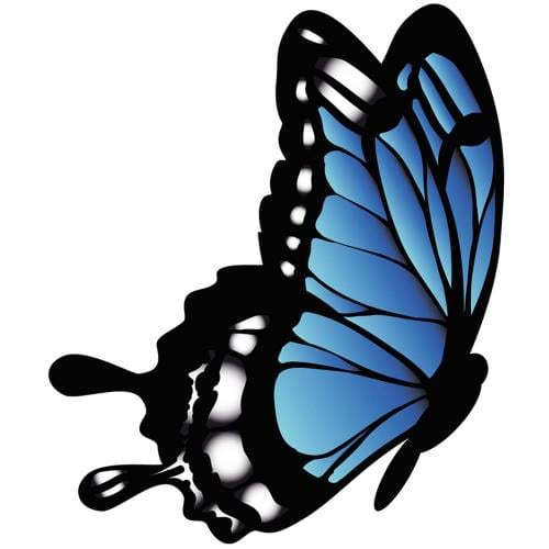 Butterfly-5-Main-Product-Image