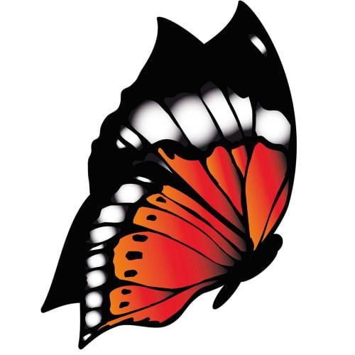 Butterfly-6-Main-Product-Image