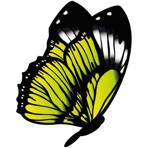 Butterfly-7-Main-Product-Image