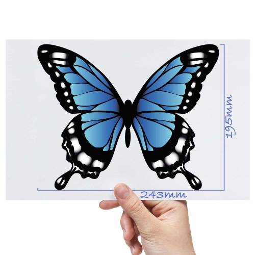 XL-Butterfly-4-Matt-HTV-Transfer