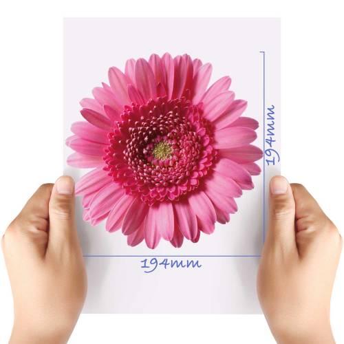 XL-Flower-10-Matt-HTV-Transfer