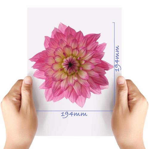 XL-Flower-11-Matt-HTV-Transfer