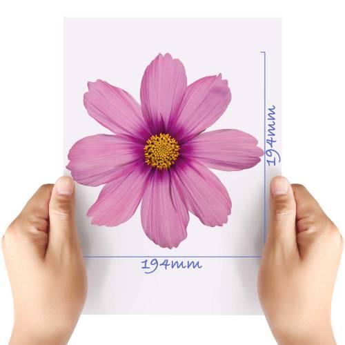 XL-Flower-12-Matt-HTV-Transfer