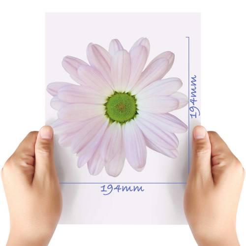 XL-Flower-13-Matt-HTV-Transfer