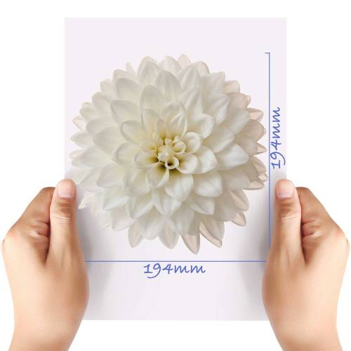 XL-Flower-14-Matt-HTV-Transfer