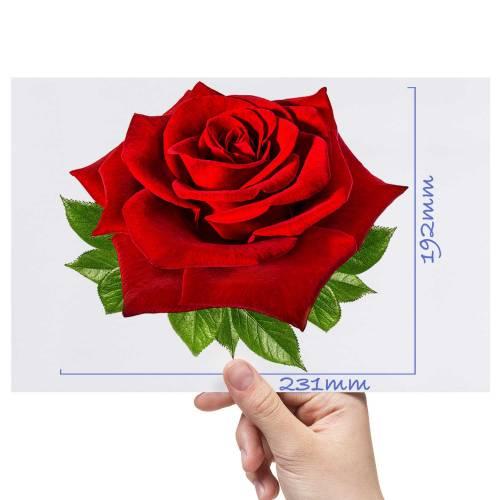 XL-Rose-1-Matt-HTV-Transfer