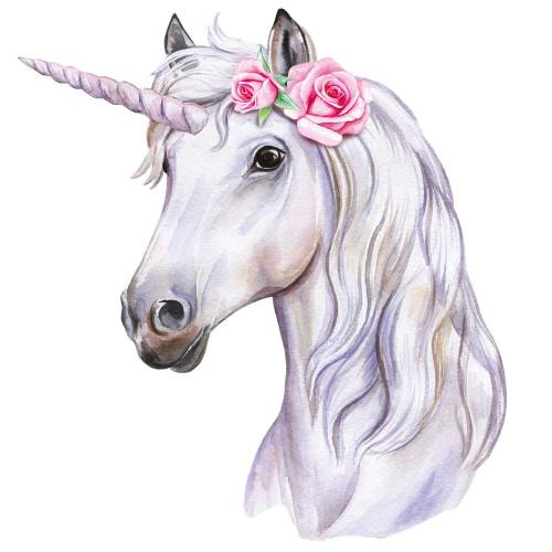 Unicorn-Main-Product-Image