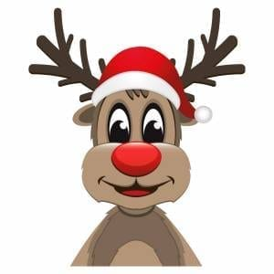 Rudolph-2-Main-Product-Image
